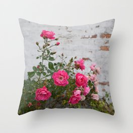 pink roses and old wall Throw Pillow