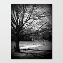 Freedom Park #3 Canvas Print