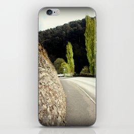 Walhalla iPhone Skin