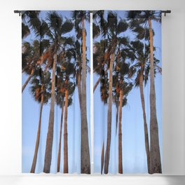 Palm Tree Photography | Miami Florida | Tropical Art | Exotic Blackout Curtain