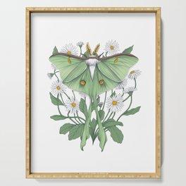 Metamorphosis - Luna Moth Serving Tray