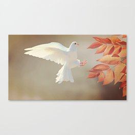 Dove Landing Canvas Print
