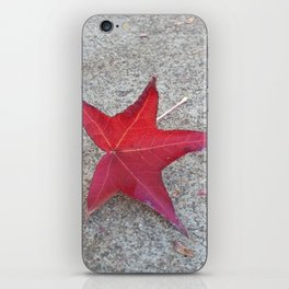 Sidewalk Star iPhone Skin