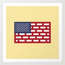 USA WALL Art Print