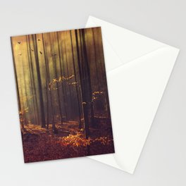 Light Hunters - Abstract orest in Sunlight Stationery Cards