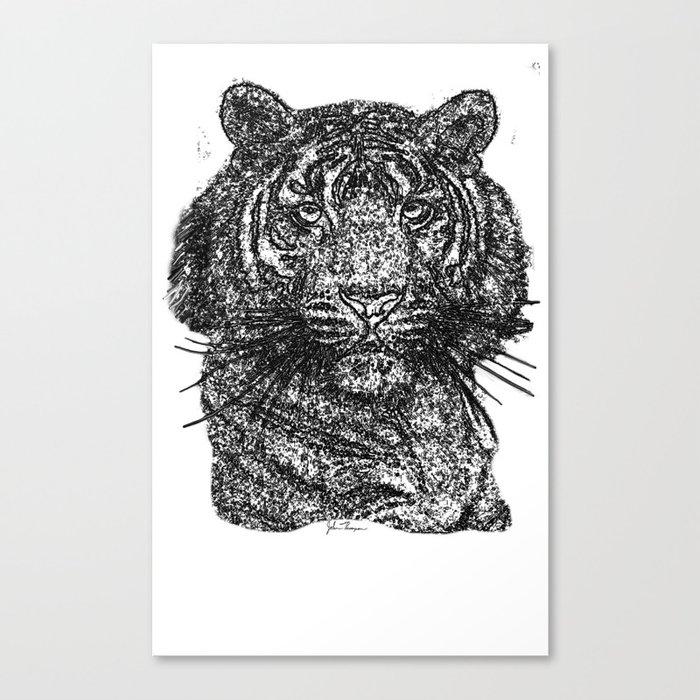 Tiger line drawing Bl Canvas Print