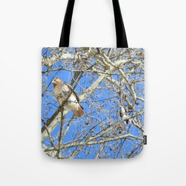 Why can't we be friends? 34 Tote Bag