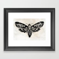 Death's-head Hawkmoth Framed Art Print
