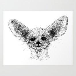 Fenec Fox Art Print