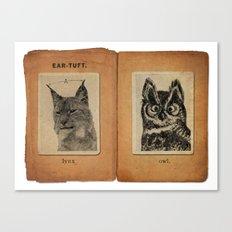 Cat vs. Owl Ear Tufts Canvas Print