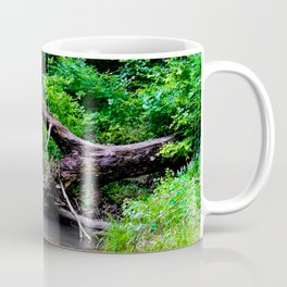 Into Mossy Glenn 13 Coffee Mug