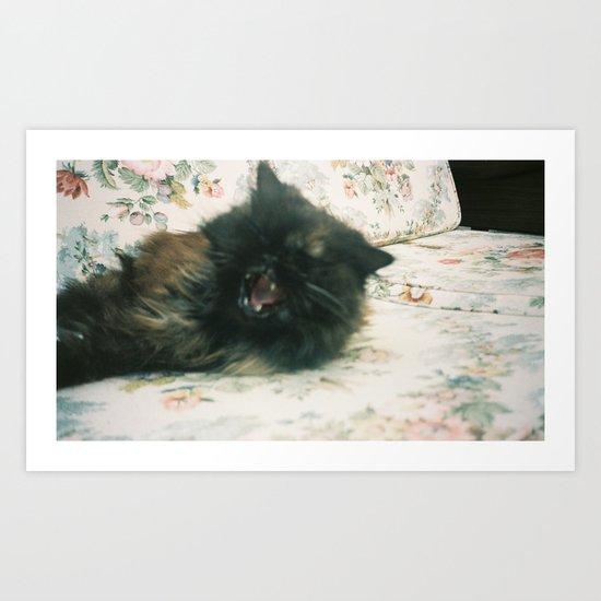 Yawning Kitty Art Print
