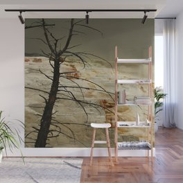 The Beauty Of A Travertine Terrace Wall Mural