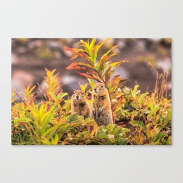 Autumn Picnic Canvas Print