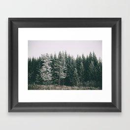Winter VIII Framed Art Print