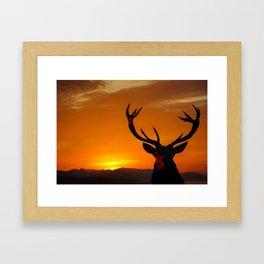 Highland Stag Framed Art Print