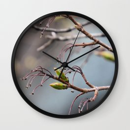 springtime tree buds Wall Clock