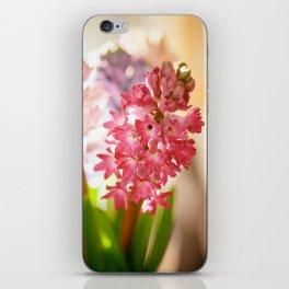 Hyacinth Sunray iPhone Skin