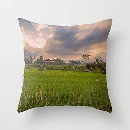 Bali rice field Throw Pillow