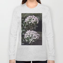 Longwood Gardens Autumn Series 209 Long Sleeve T-shirt