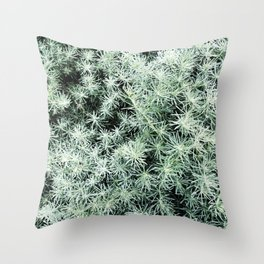 35    Plants Photography   200630   Throw Pillow