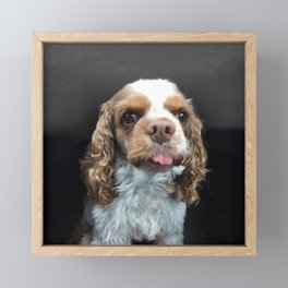 Fiona - the wonder dog Framed Mini Art Print