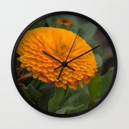 Calendula Flower Wall Clock