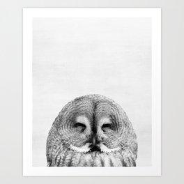 Owl, Woodland, Bird, Animal, ZOO, Nursery, Minimal, Modern, Wall art Art Print