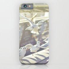 Birds playing on sunshine Slim Case iPhone 6s