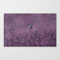Nature purple garden Canvas Print