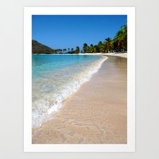cove of nature Art Print