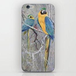Kuhnert, Friedrich Wilhelm (1865-1926) - Wild Life of the World 1916 v.2 (Blue Macaw) iPhone Skin