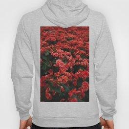 red flora #society6 #decor #buyart Hoody