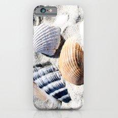 Shells in Charleston Slim Case iPhone 6s