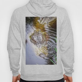 Gator Blowing Bubbles Hoody