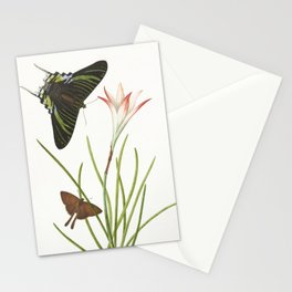 Two butterflies on a Lily, 1747 Stationery Cards