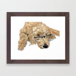 Goldendoodle Stella Framed Art Print