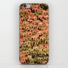 Autumn is here iPhone Skin