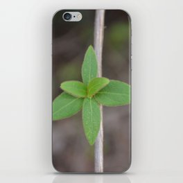 Almost Symmetry of Nature iPhone Skin