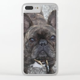 Tennis court dog Clear iPhone Case