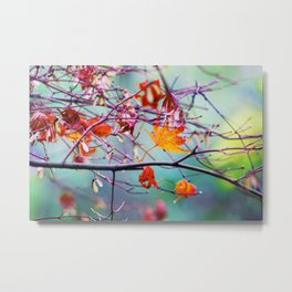 Poetic Autumn Time Special in the Middle of November Metal Print