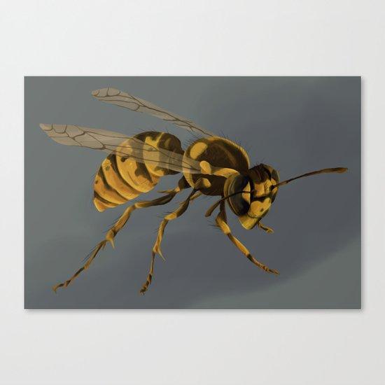 little wasp  Canvas Print
