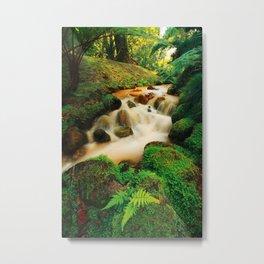 Parque Terra Nostra Metal Print
