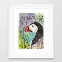 puffin Framed Art Prints featuring Puffin by Catherine Johnson