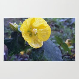 Yellow Flower with raindrops Rug