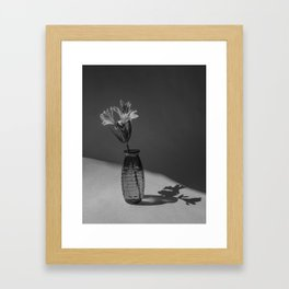 Shadow and flower Framed Art Print