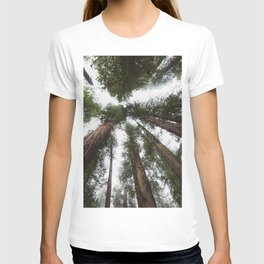 Redwood Portal - nature photography T-shirt