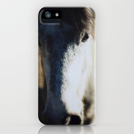 Horse Wall Art Abstract Color Film Photograph Gray and Brown Equine iPhone Case