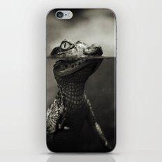 Baby crocodile iPhone & iPod Skin