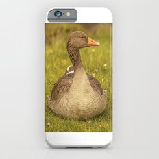 Goosey Lucy iPhone 6s Slim Case
